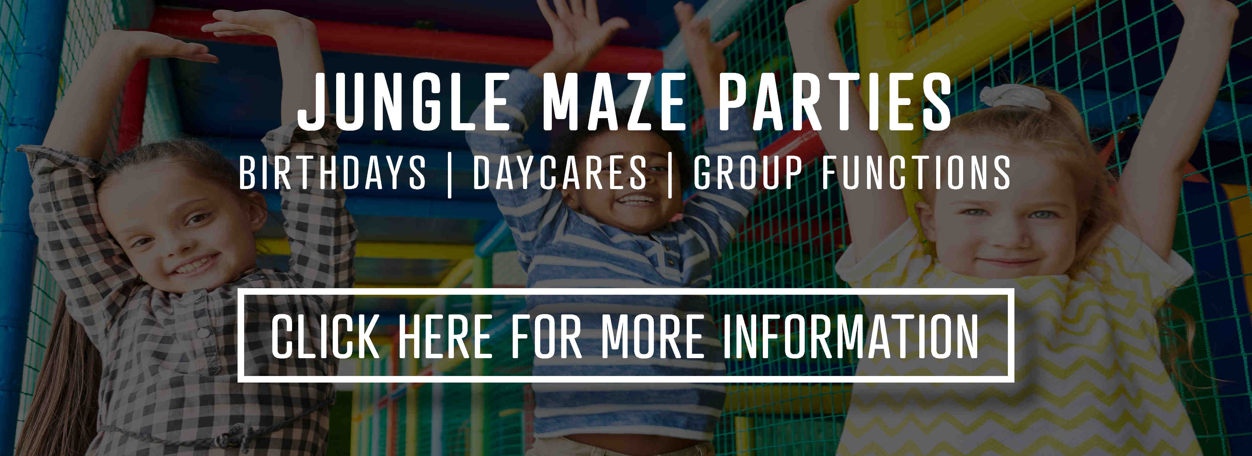 Click here for Jungle Maze play structure party information